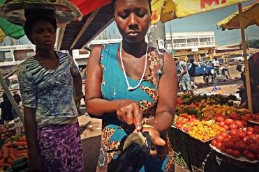 Boiled Cassava