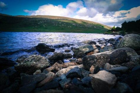 Scottish nature