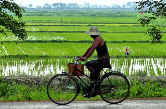Dhala and Twante, Myanmar